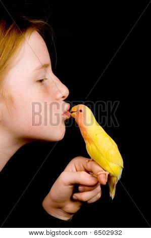 Little Girl Is Kissing Lovebird On Black