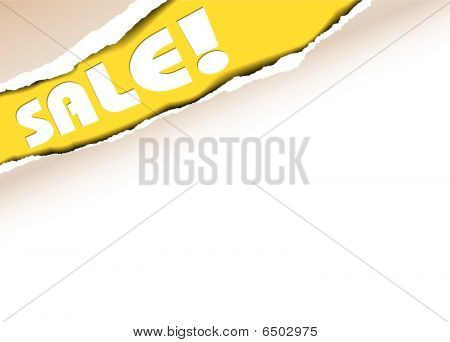 Vector Ripped Paper - Background For Items In Sale