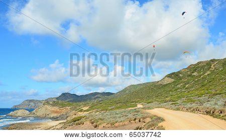 Para Gliders