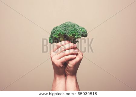 Hands Holding Broccoli