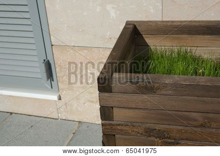 Wooden Planter With Grass