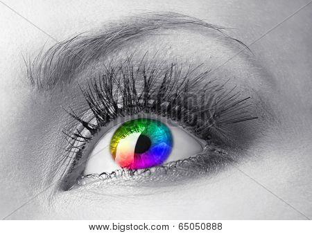 Beautiful colorful eye close up