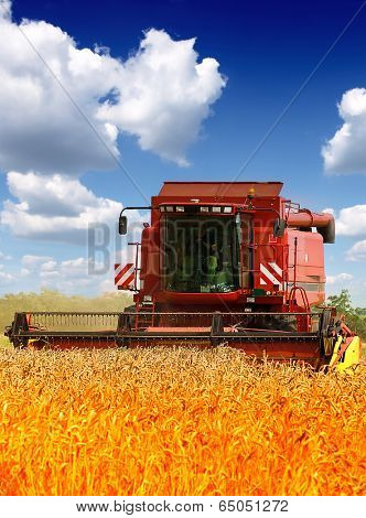 Combine harvester harvesting wheat on sunny summer day