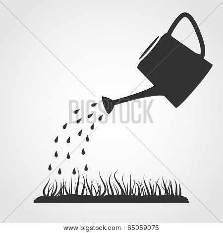 Watering Can And Lawn