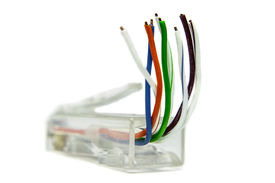 image of cat5  - Ethernet cat5 connector for networking on white background - JPG