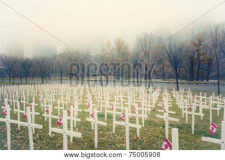 Crosses in the Mist