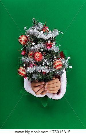Small Christmas Tree Handed To You