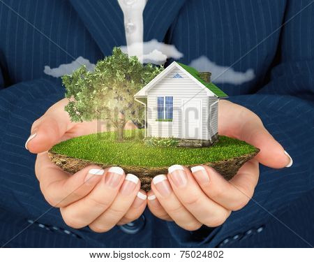 Hands Holding Beautiful Small Island With Grass And Tree And House Levitating In The Sky