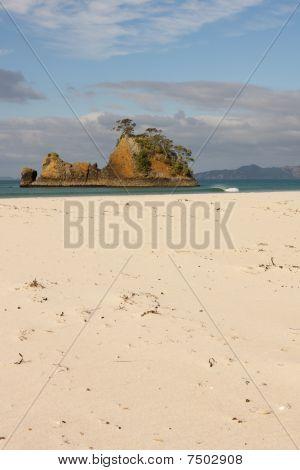 Pungapunga Island New Zealand