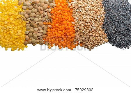 variety of grains on a white background
