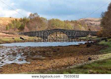 Stone Bridge In The Scottish Countryside