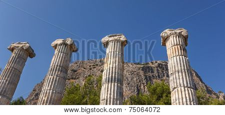 Four Columns In Temple Athena