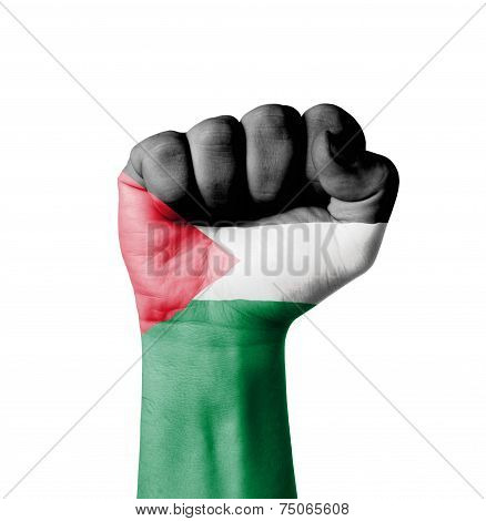 Fist Of Palestine Flag Painted