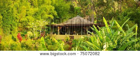 Tropical Cabin Retreat in the Jungle