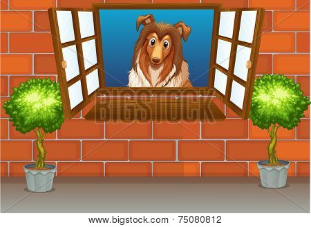 illustration of a dog by the window