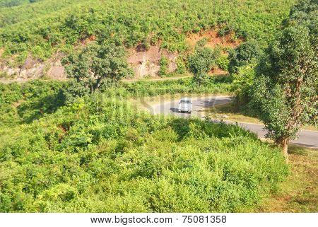 Road Through The Jungle Scrub