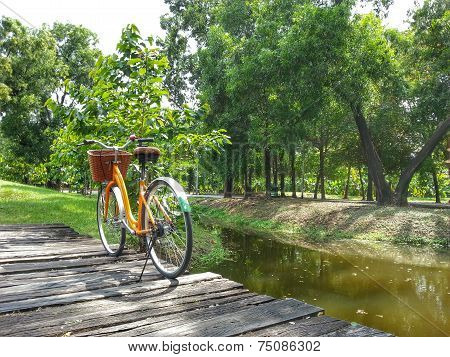 Bicycle in park H.D.R.