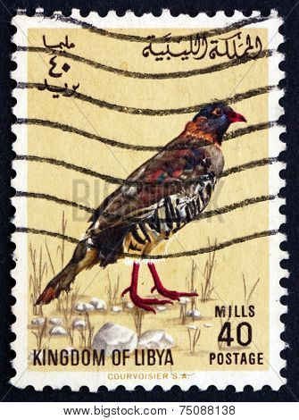 Postage Stamp Libya 1965 Libyan Barbary Partridge