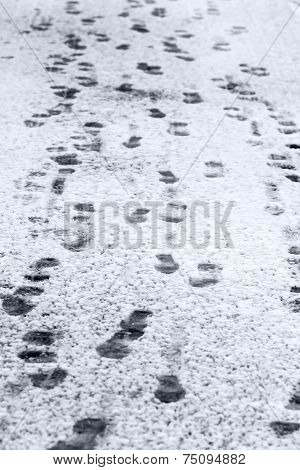 Footprints On Snow Surface