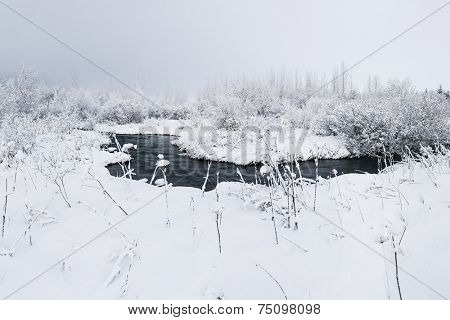Fresh snowfall in the wilderness covering riverbank of a small stream
