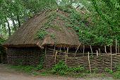 picture of kiev  - Traditional farmer - JPG