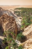 stock photo of tozeur  - Mountain oasis Chebika at border of Sahara Tunisia Africa - JPG