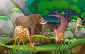 stock photo of jungle animal  - Illustration of animals in the jungle - JPG