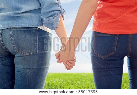 people, homosexuality, same-sex marriage, gay and love concept - close up of happy lesbian couple holding hands over blue sky and grass background