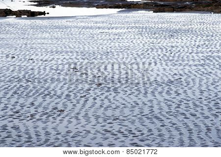 Wet Ripples Of Sand