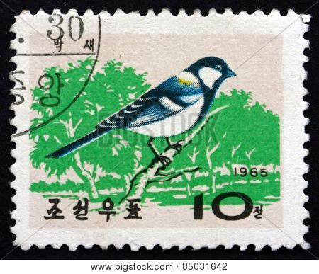 Postage Stamp North Korea 1965 Korean Great Tit, Bird