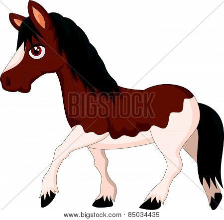 Cartoon pony horse