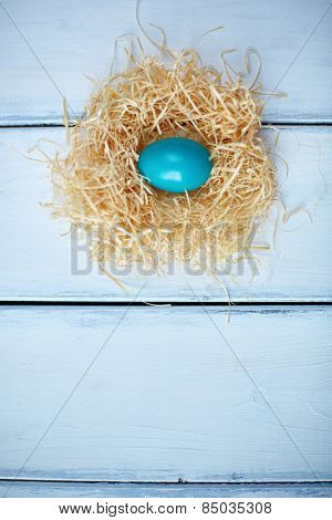High angle view of an egg in straw