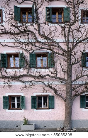 HALLSTATT, AUSTRIA - DECEMBER 13: The tree grows next to the house on December 13, 2014 in Hallstatt, Austria.