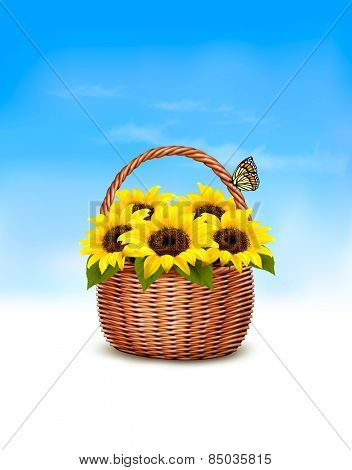 Spring background. Basket full of sunflowers and a butterfly. Vector.