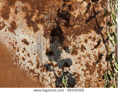Surface Of The Metal Sheet Coated With Rust