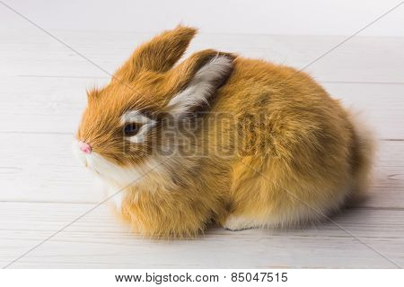 Ginger bunny rabbit on wooded planks