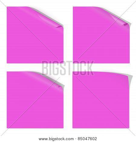 Magenta Paper Curled Corner