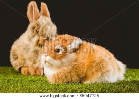 Ginger bunny rabbit on green grass