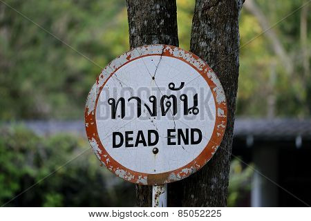 Dead  end   sign  and  warning