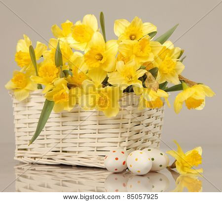 Easter eggs and yellow narcissus
