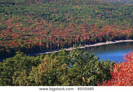 Allegheny national park
