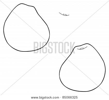 Delightful Garden - Pear-shaped Apple
