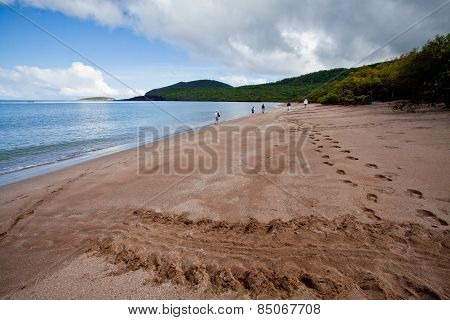 Beautiful landscape of a beach in the Galapagos Islands