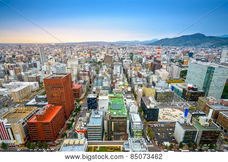 Sapporo, Japan central ward cityscape viewed  from above.