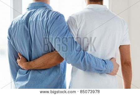 people, homosexuality, same-sex marriage, gay and love concept - close up of happy male gay couple hugging from back