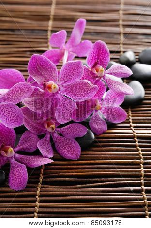 Branch pink orchid and set of stones on mat