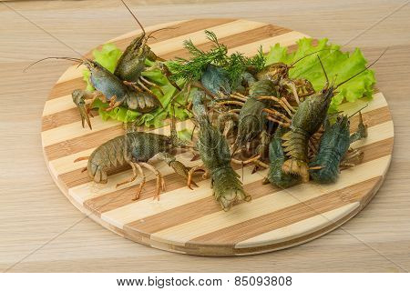 Raw Crayfish