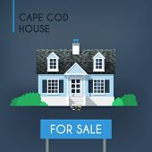 picture of cape-cod  - Blue cape cod country house with grey roof and bushes around it - JPG