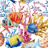 picture of fish  - Beautiful vector pattern with nice watercolor fishes - JPG