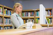 stock photo of librarian  - Pretty librarian working in the library at the university - JPG